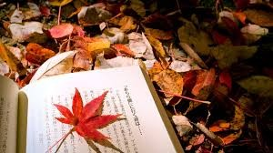reading autumn
