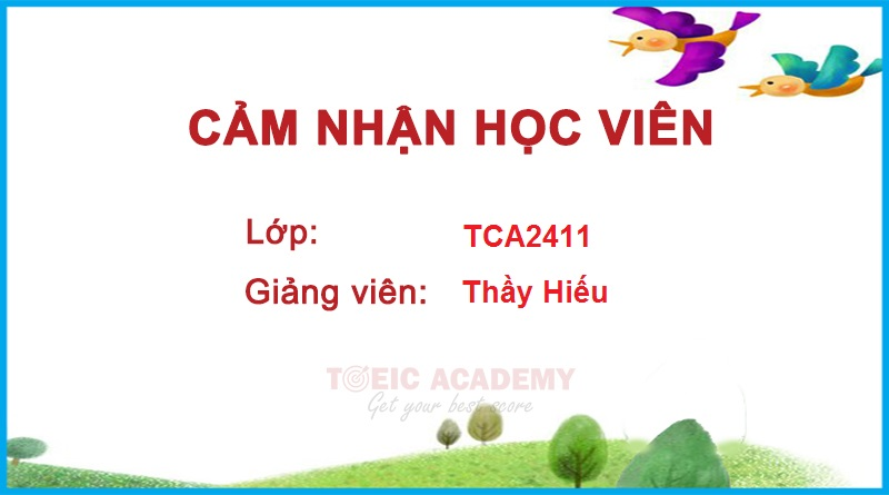 TCA2311
